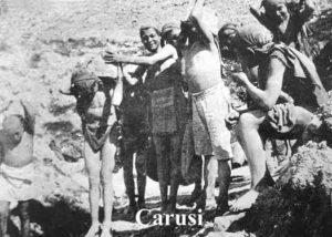 19 Carusi