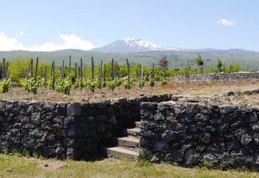The Long Finish for Sicilian Wines