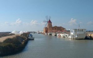 Salt Museum and boats to Mozia